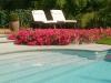 zwembad onderhouden Haacht